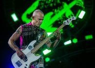 """Flea, despre viața înainte de Red Hot Chilli Peppers: """"Am crescut alergând de colo-colo în fundul gol"""""""