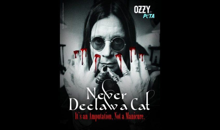 Ozzy condamnă îndepărtarea ghearelor pisicilor într-un mesaj PETA